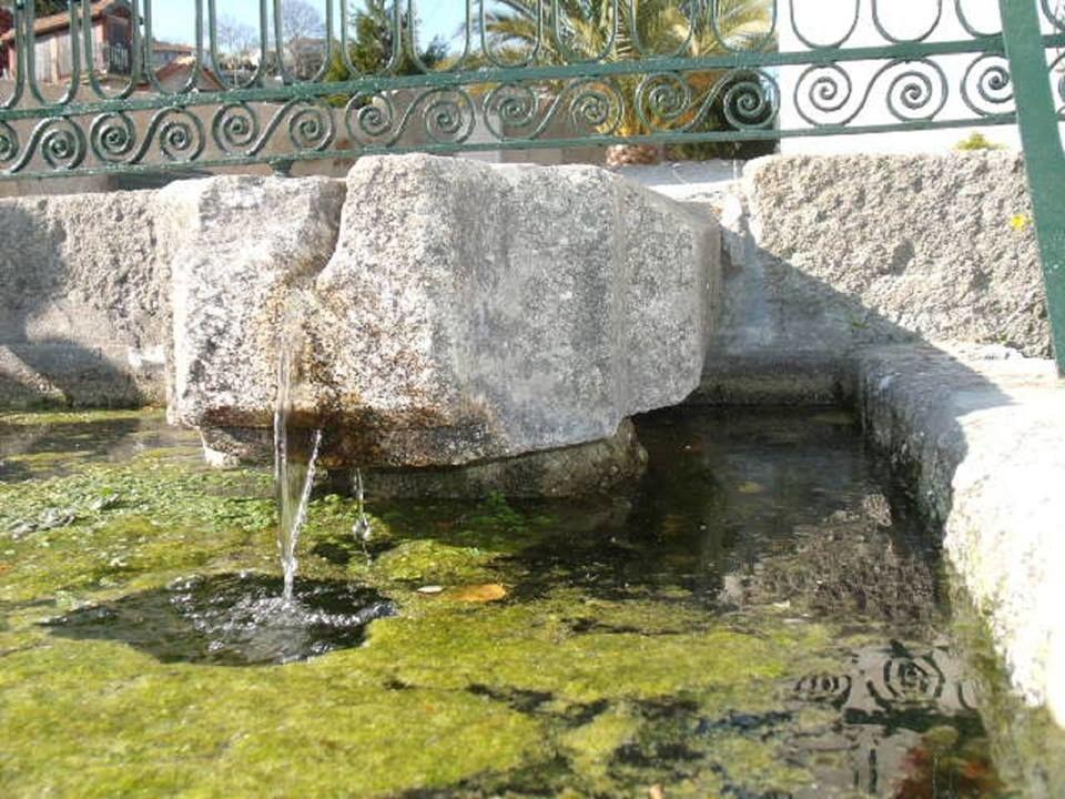 Quinta da Casa Grande de Pinheiro