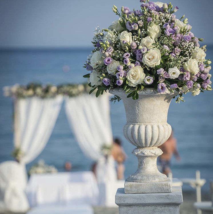 Sara Vicale Wedding & Event Planner