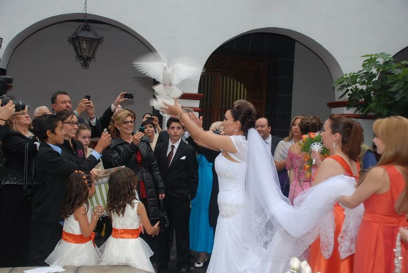 Karla Corral Event and Wedding Planner - Querétaro