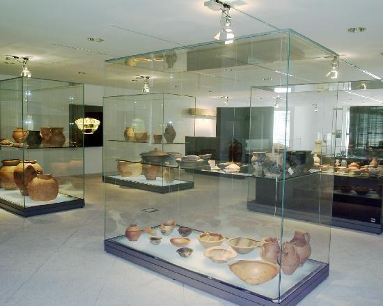 Museu D. Diogo de Sousa