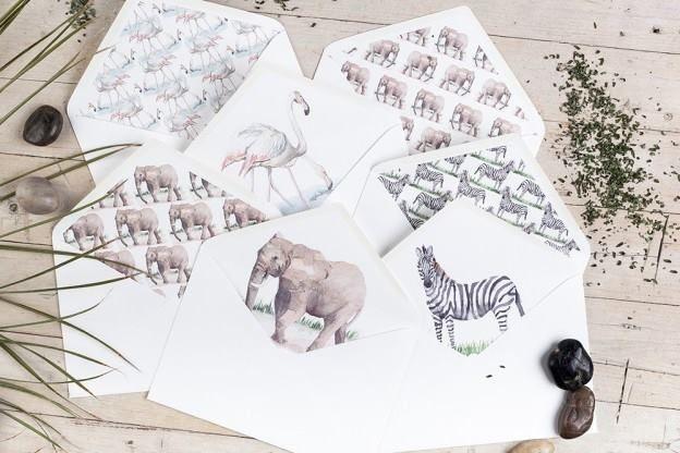 coleccion safari