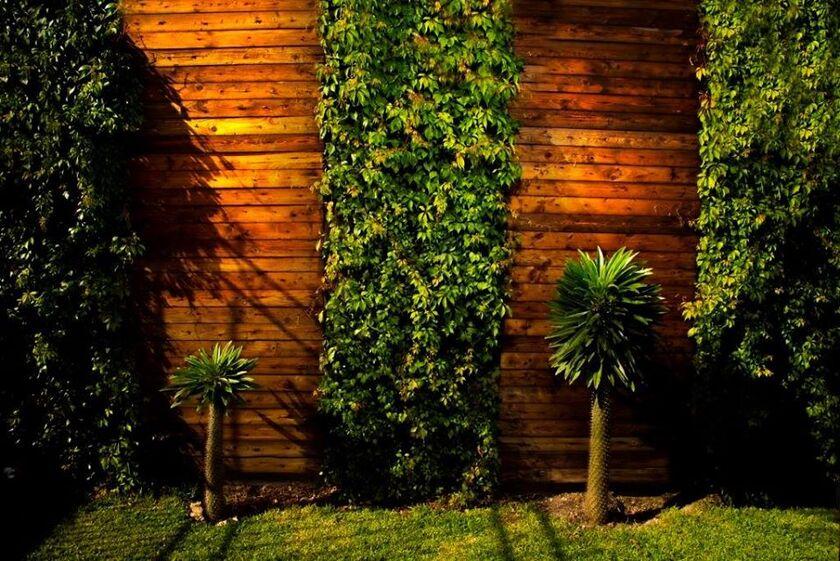Jardín Alas de Frida
