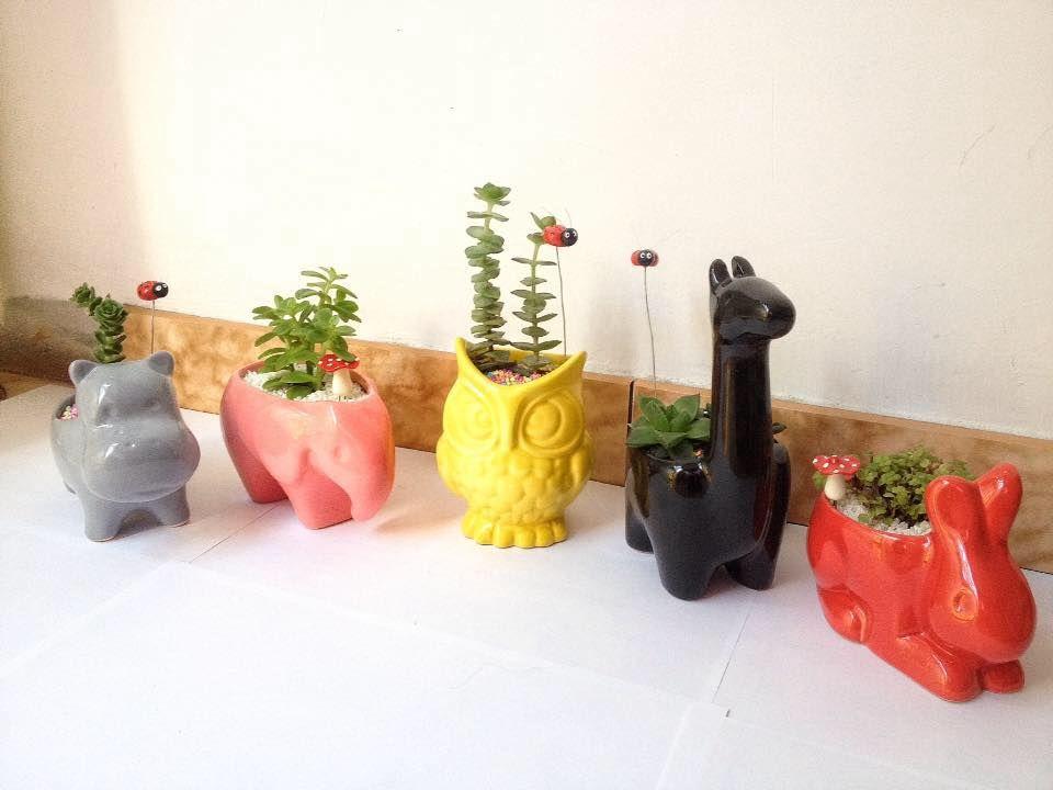 El Jardincito Secreto
