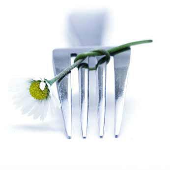 Beispiel: Catering- und Eventservice, Foto: C E S.