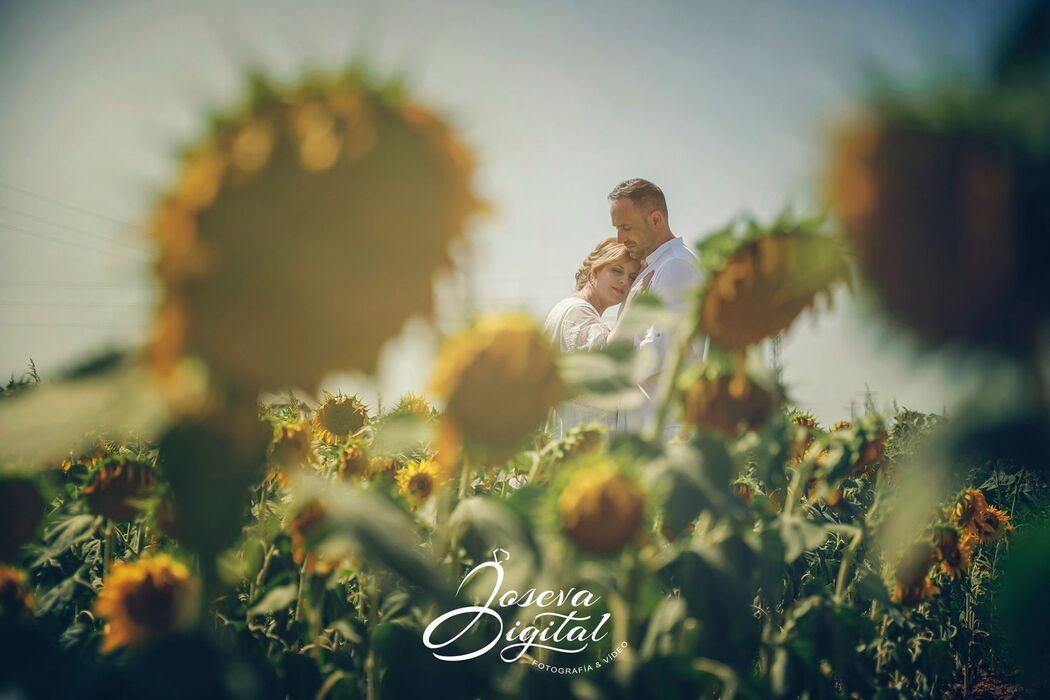 Joseva Digital - Fotografía y Vídeo