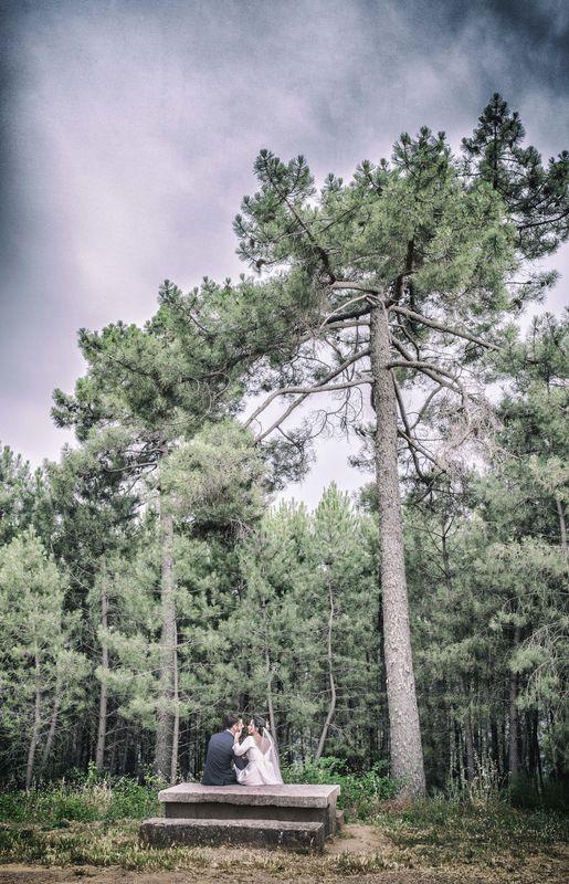 En el bosque. Juan Aunión, Fotógrafo de Bodas en Badajoz