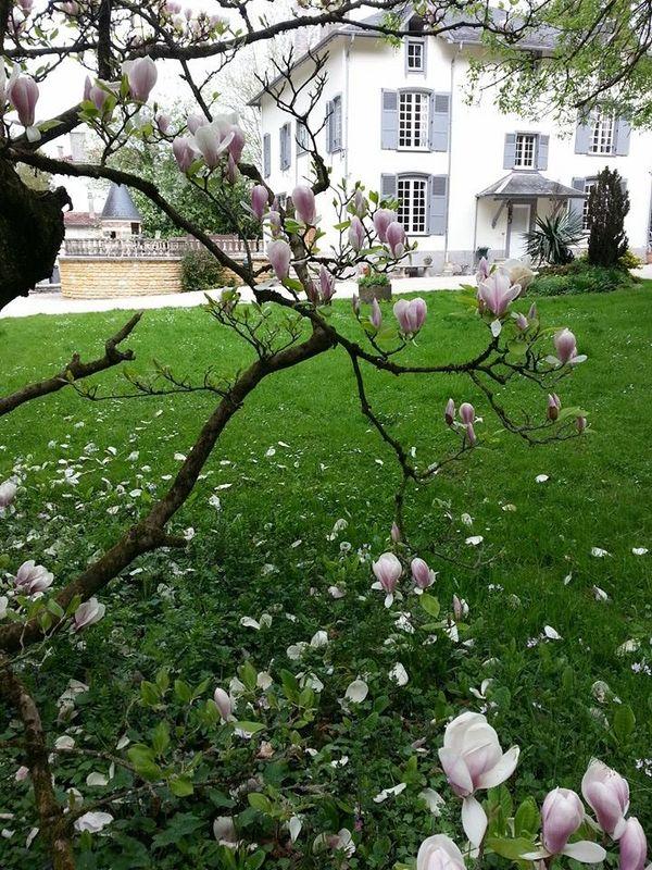 Villa Les Roses