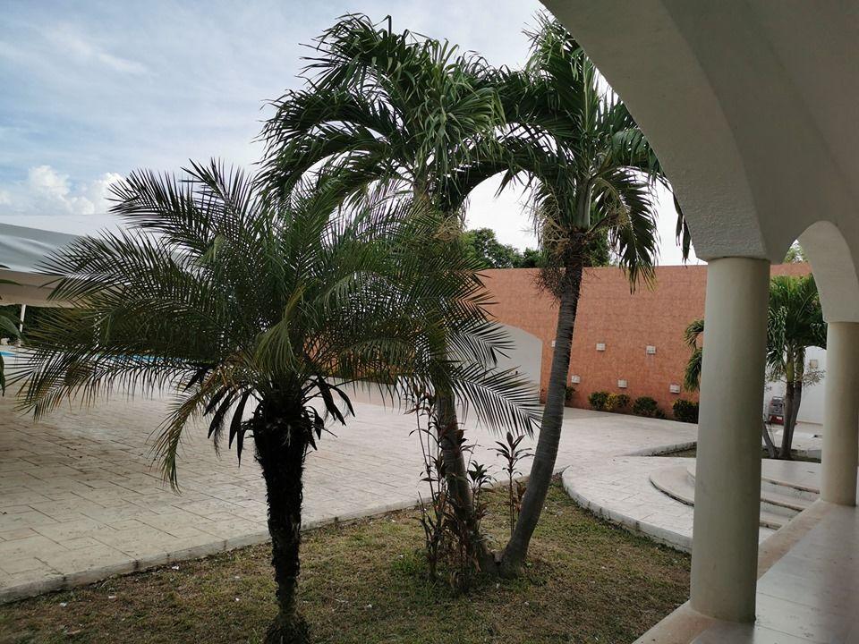 Quinta Zertuche