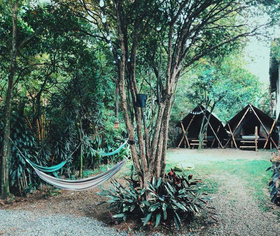 Bambú Glamping City House