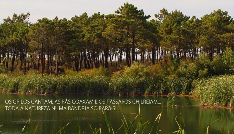Foto: Quinta do Campo