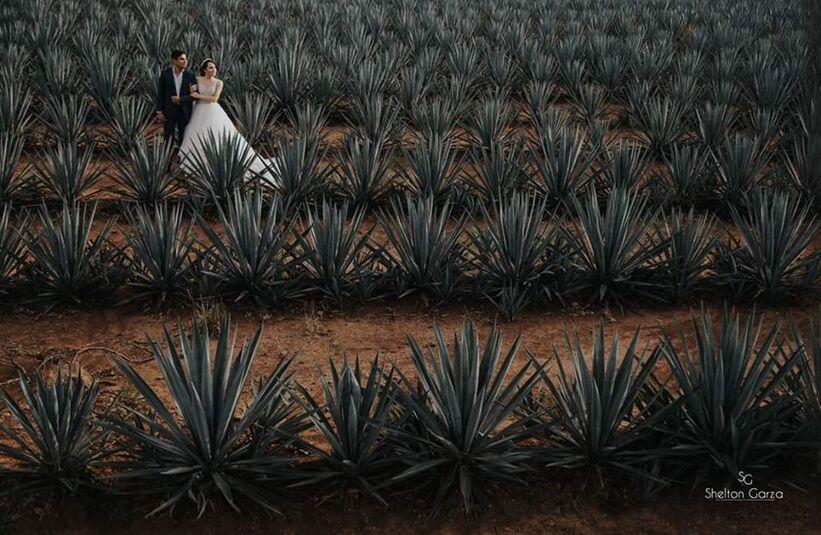 Shelton Garza Wedding Photographer