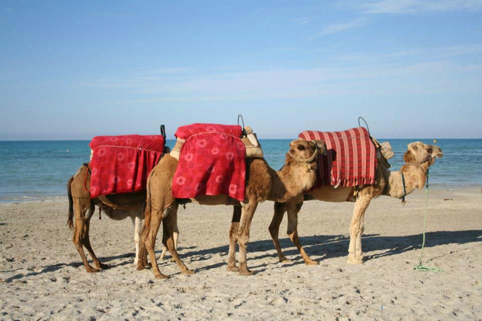 Consulenza Viaggi Vacanze