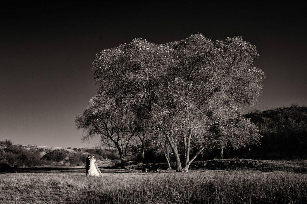 Alex Mendoza Fotógrafo
