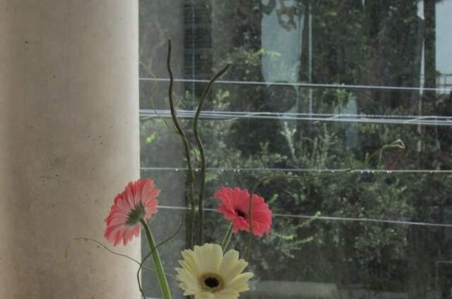 Pasión Floral