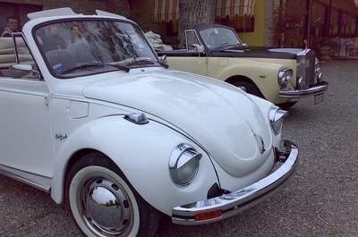 Le Auto Di Piero