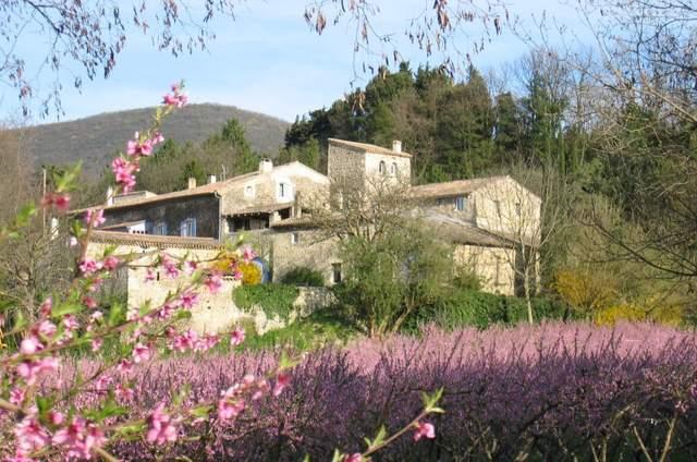 Domaine Les Fougères