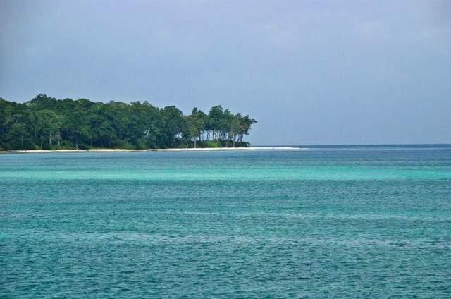 Island of Marigold