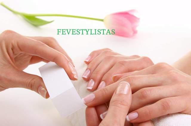 Fevestylistas