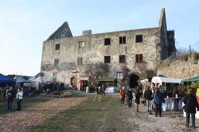 Schloss Burkheim