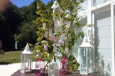 Lux Even - Event & wedding Planner