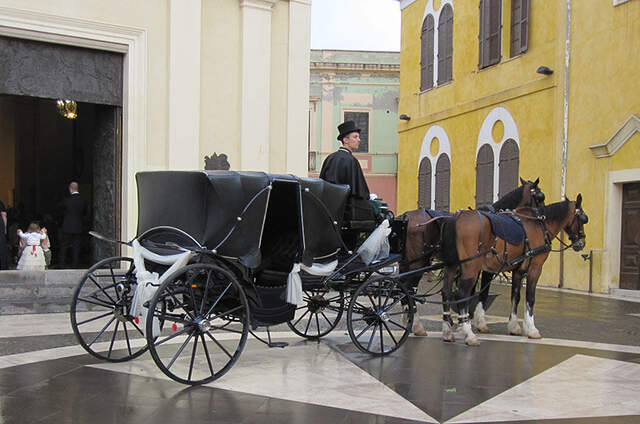Carrozza Service