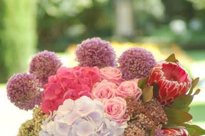Fundación A LA PAR - Flores