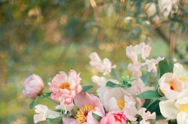 Anna Runge Floral & Event Design